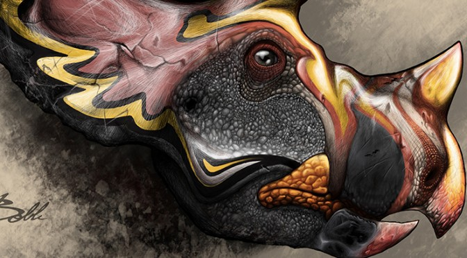Imagining the past: an artistic triceratops