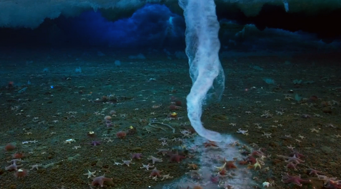 """As it touches the sea floor..."" 